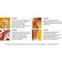Изображение - Лечение алмагом голеностопного сустава 0.252947001503905053